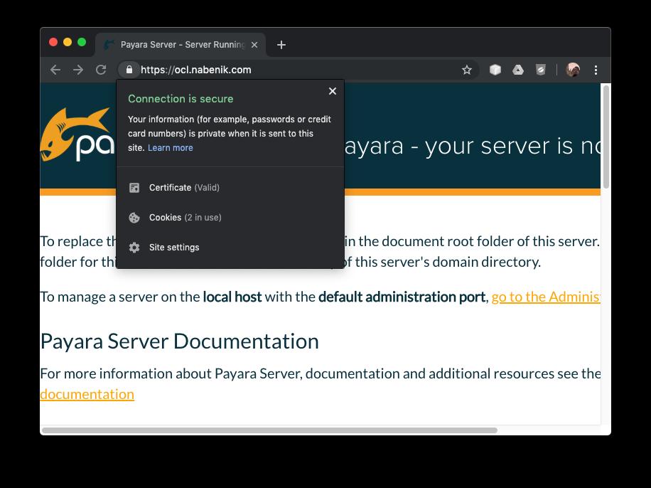 descargar netbeans 8.2 con jdk para linux